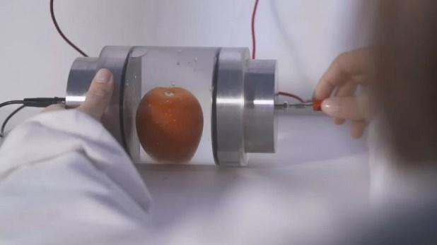 Électriser les fruits et légumes pour mieux les transformer