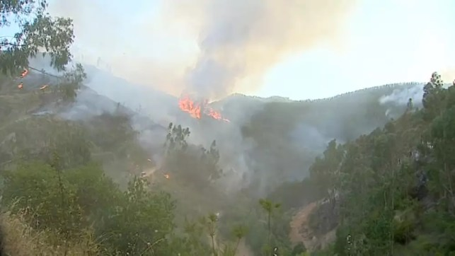 Portuguese firefighters battle to contain blaze and heatwave goes on