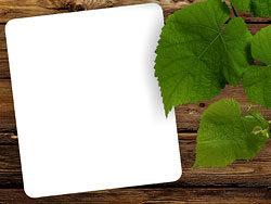 Wallpaper Batu Alam 3d Green Leaf Wood Background 04 Hd Pictures Free Download