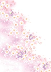White Flower And Pink Background Vector For Free Download Free Vector