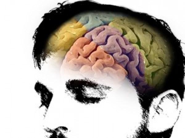 Non sei creativo? Tutta colpa della tua corteccia prefrontale.