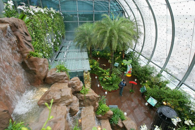 Piscine sui tetti cinema gratis e giardini tropicali