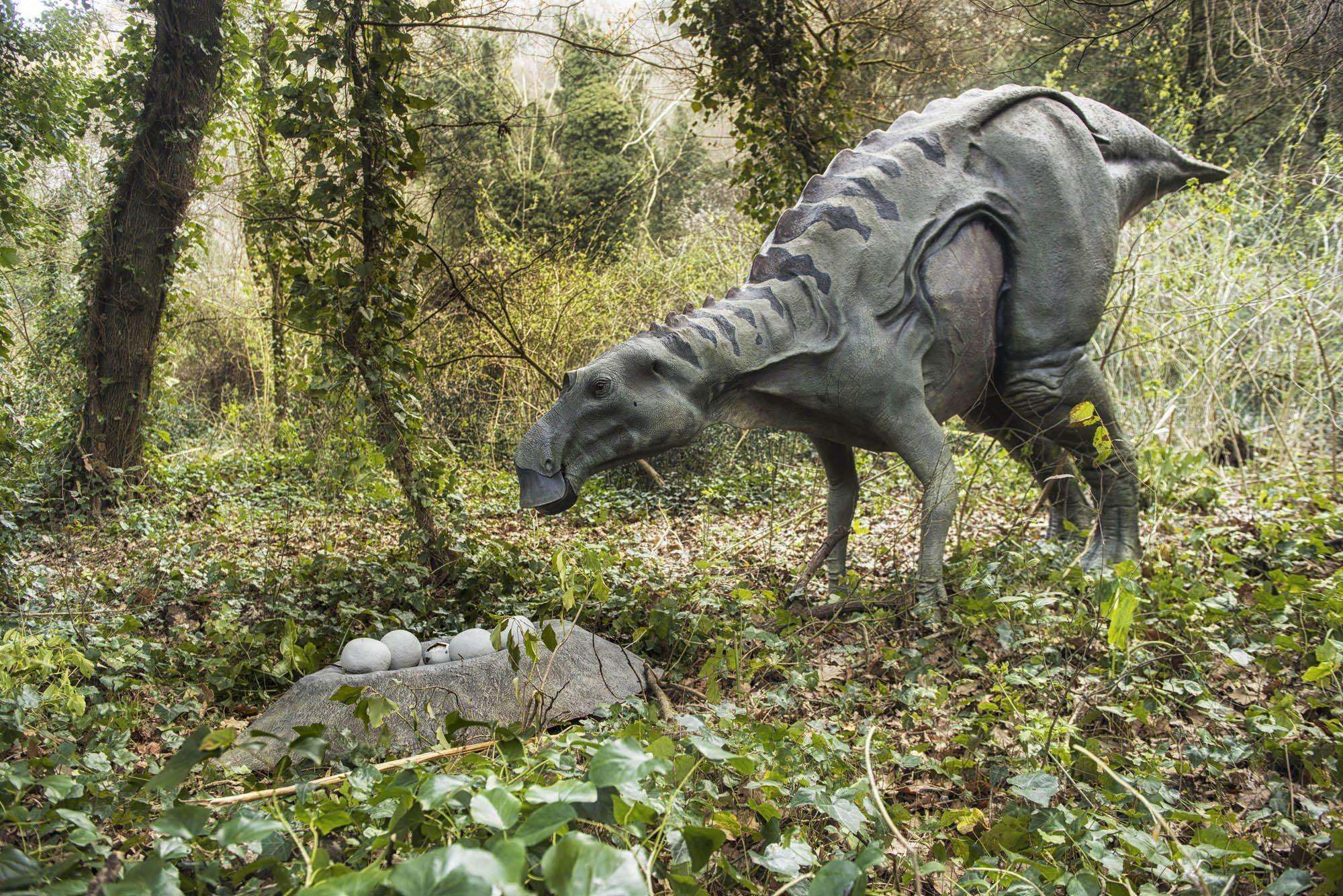 Jurassic Park a Napoli dinosauri in mostra alla riserva Wwf degli Astroni