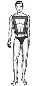 Trapezoid Body Shape
