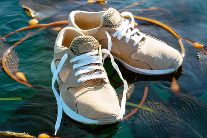 Chaussures Ransom Holding Co