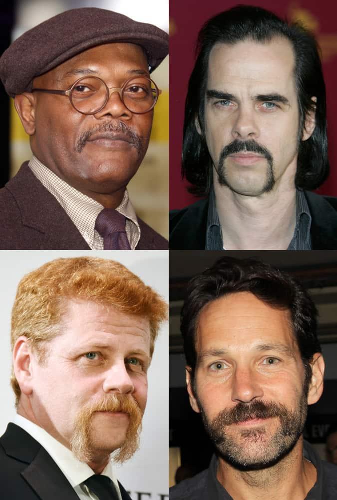 The Horseshoe Moustache Style