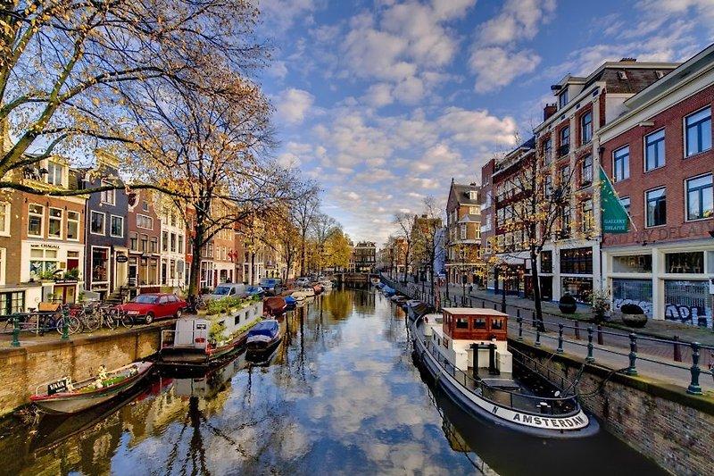 Ferienwohnung Koningstraat 15  Ferienhaus in Zandvoort mieten