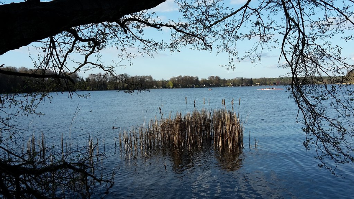 Fewo Dahmeblick eigener Dahmezugang  Ferienwohnung in Heidesee mieten