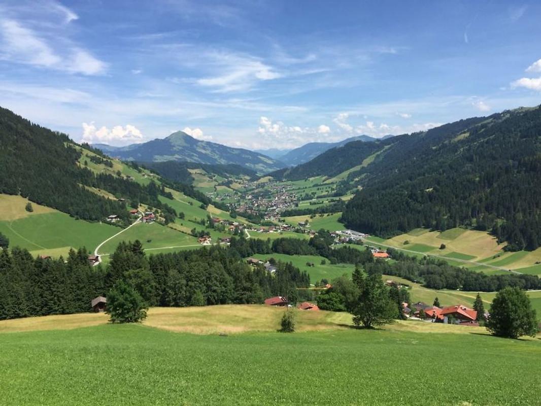 Sonnenalp Bergblick 24 personen in Niederau  Bedrijf