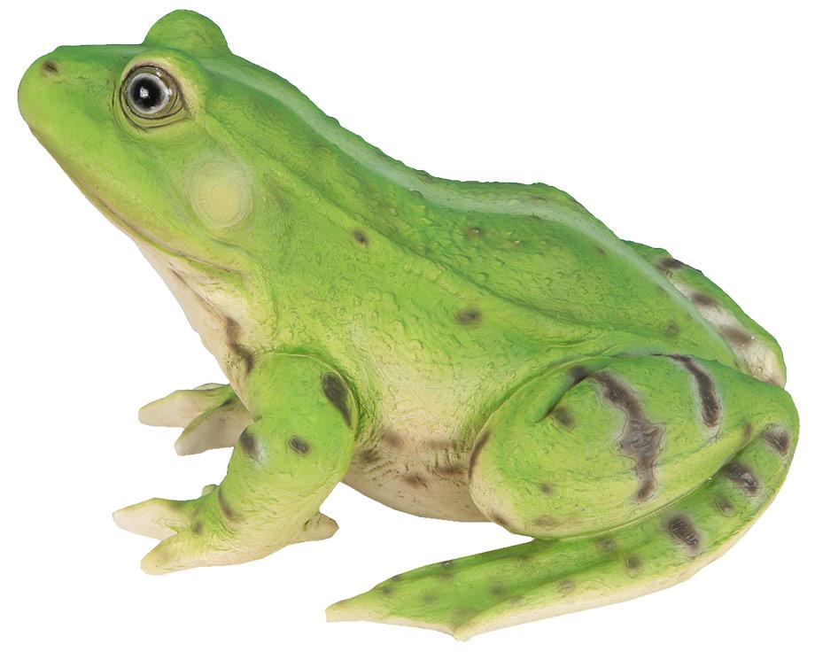 deco grenouille pour jardin