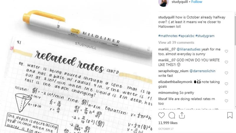 'Ur so good omg': Insta fans go nuts over perfect study notes