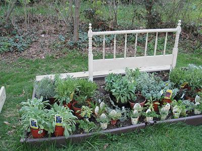 flowerbed_before