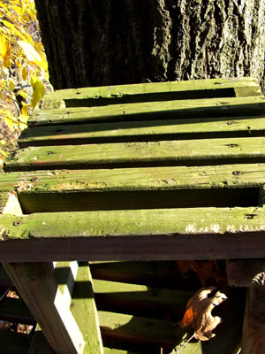 high treestand seat