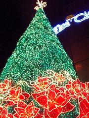Christmas Light-up Singapore 2