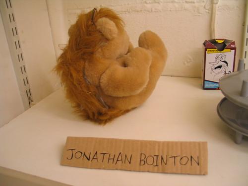 'Glassback bear' by Jonathan Bointon
