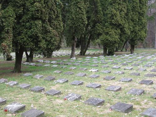Cmentarz żołnierzy włoskich (III)