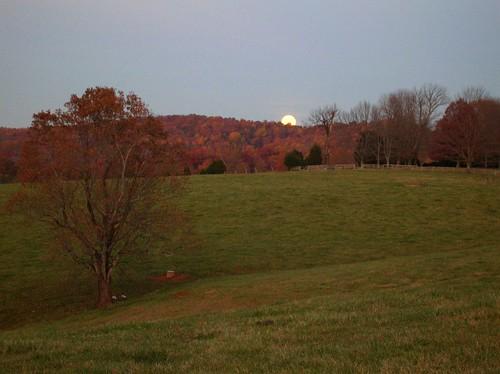 Rising Moon 2