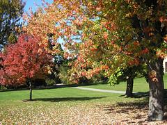 Campus de Cornell