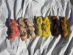 natural dyed yarn