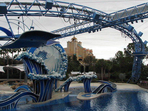 Dolphin Arena
