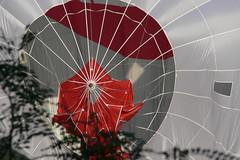 Hot-air baloon at my yard I Gaisa balons sētā