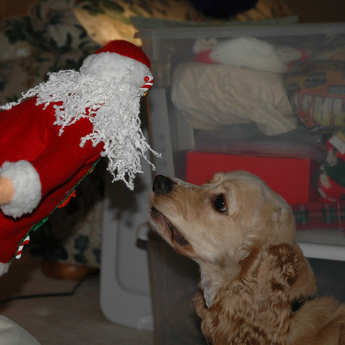 Maggie doesn't approve of Santa