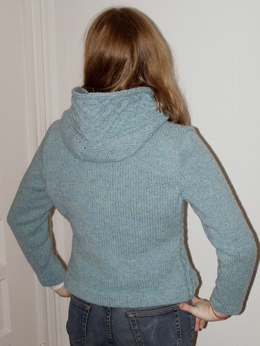 Completed Rogue, back view