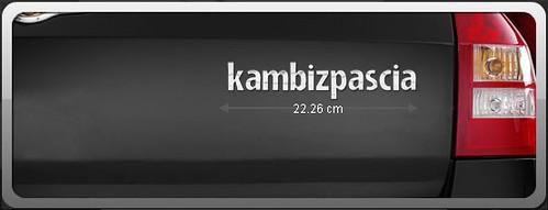 Capture01-12-2006-20.02.58