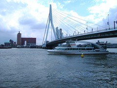 I know this is a very cliché picture of the Erasmus bridge in Rotterdam, Holland