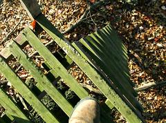 high treestand ladder