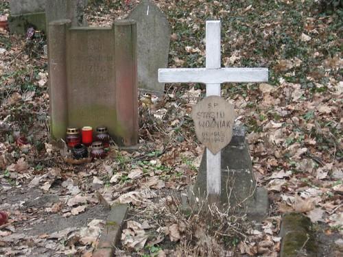 Stary cmentarz na Grabiszynku (I)