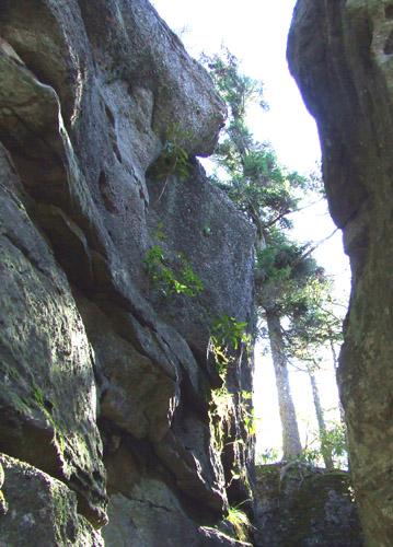 Bear Heaven canyon