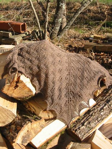 shawl on logs