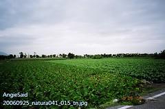 20060925_natura041_015_tn