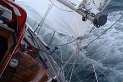 Races: North Sea Yacht Race 2006 (1/6)
