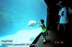 20060924_natura037_016_tn