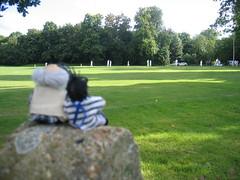 Jimmy and Grandad watch Cricket