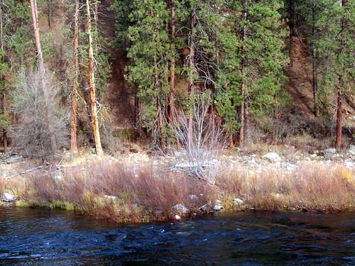 11-12-riverbank