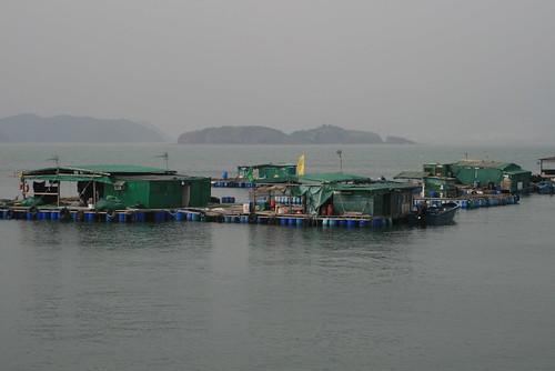 Kat O Island (o Crooked Island) casas de pescadores