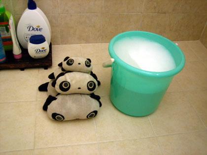 bathing the pandas 1