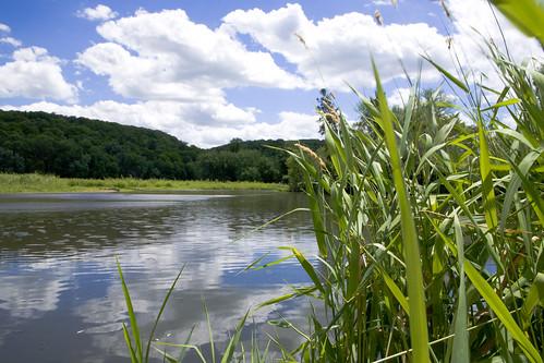South Zumbro River