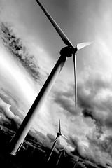 Wind Turbines by Matt Lyons