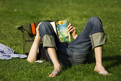 libro fuente flickrcc