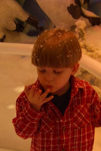 Copy of santa pics06 012