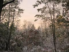 Nov_Dec_2006 067