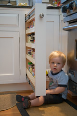 Hanging out behind the spice rack
