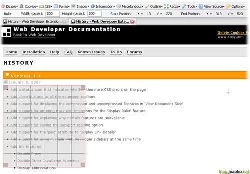 web_developer_0 (by joaoko)