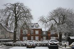 Snow flats