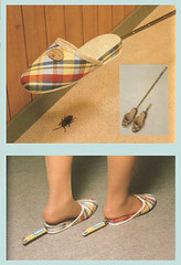 Jap Invention (Telescopic Slippers for Bug Killing)