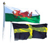 Wales and St. David's Flag